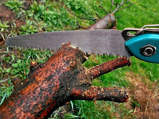 Wood trimer