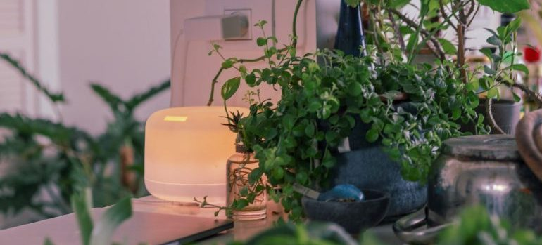 air purifier on the counter